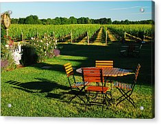 Picnic In The Vineyard Acrylic Print by James Kirkikis