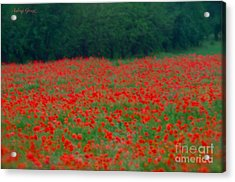 Pictorial Photography Poppy Fields At Galicia. Tribute To Alfred Stieglitz . Acrylic Print