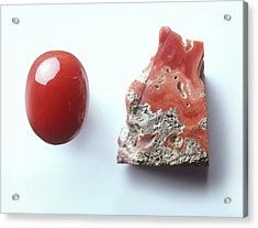 Piece Of Red Coral And Red Coral Cabochon Acrylic Print