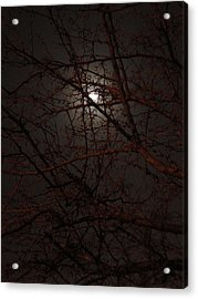 Pieces Of The Moon Acrylic Print by Guy Ricketts