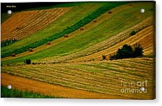 Pieniny Mountains - Pages Of My Diary. 14th August 2013. Acrylic Print