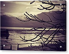 Pier Thru The Tree Acrylic Print by Dawdy Imagery