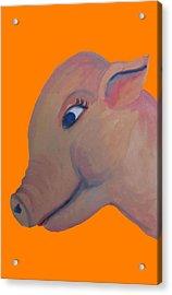 Pig On Orange Acrylic Print by Cherie Sexsmith