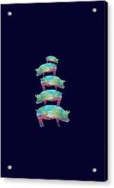 Pig Stack Acrylic Print