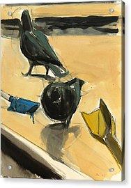 Pigeons Acrylic Print