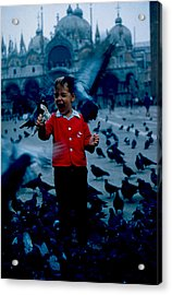 Pigeons Galore 1961 Acrylic Print by Cumberland Warden