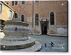 Pigeons In A Courtyard By Well Acrylic Print