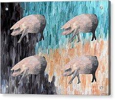 Piggies Acrylic Print
