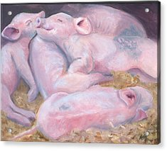 Piglets At Peace Acrylic Print by Deborah Butts