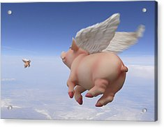 Pigs Fly 2 Acrylic Print by Mike McGlothlen
