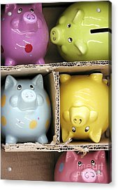 Pigs In A Box Acrylic Print