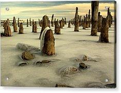 pilings VII Acrylic Print