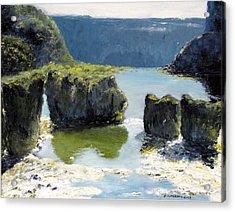 Pillar Falls Acrylic Print