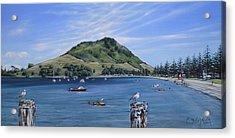 Pilot Bay Mt M 291209 Acrylic Print