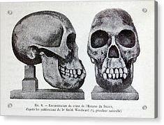 Piltdown Man Skull Reconstruction Acrylic Print