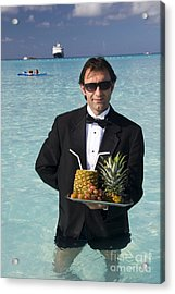 Pina Colada Anyone Acrylic Print by David Smith