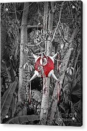 Pinata In Woods Acrylic Print by Joan  Minchak