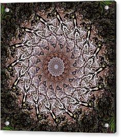 Pine Bark Mandala #1 Acrylic Print