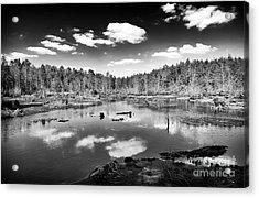 Pine Barrens Lake Acrylic Print by John Rizzuto