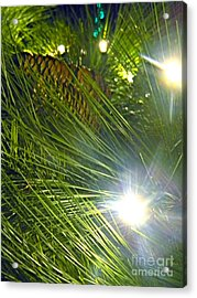 Acrylic Print featuring the photograph Pine Cone With Lights by Utopia Concepts