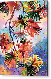 Pine Needle Fireworks Acrylic Print by Dianne Bersea