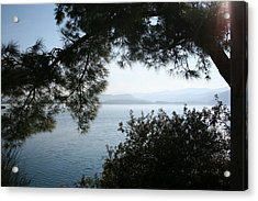Acrylic Print featuring the photograph Pine Trees Overhanging The Aegean Sea by Tracey Harrington-Simpson