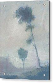 Pine Trees Through The Twilight Mist Acrylic Print by Alan Daysh