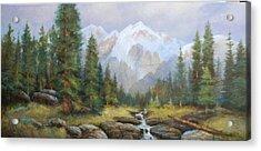 Pine Valley Acrylic Print by Richard Hinger