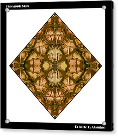 Pineapple Skin Acrylic Print by Roberto Alamino