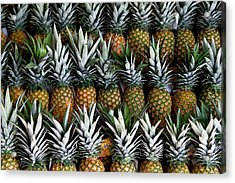 Pineapples  Acrylic Print