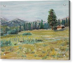 Pingree Park Acrylic Print by Mary Benke