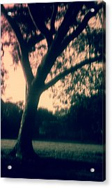 Pinholed Park Acrylic Print