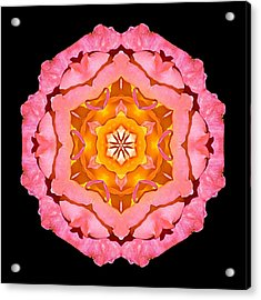 Acrylic Print featuring the photograph Pink And Orange Rose I Flower Mandala by David J Bookbinder
