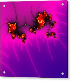 Pink And Purple Digital Fractal Artwork Acrylic Print by Matthias Hauser