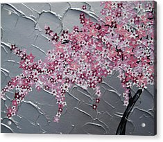 Pink And White Cherry Blossom Acrylic Print by Cathy Jacobs