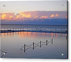 Pink At Dawn Swimming Acrylic Print