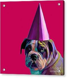 Pink Birthday Pup Acrylic Print by Jennifer Gibson
