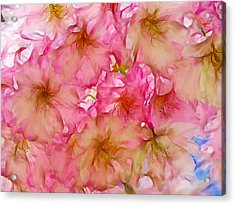 Acrylic Print featuring the digital art Pink Blossom by Lilia D