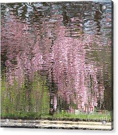 Pink Breeze Acrylic Print by Karin Ubeleis-Jones