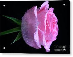 Pink Bubbly Acrylic Print by Tracy  Hall