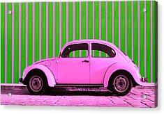 Pink Bug Acrylic Print by Laura Fasulo