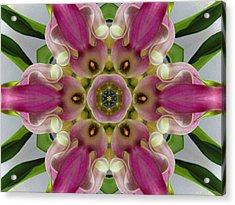 Pink Calla Lily Flower Mandala Acrylic Print