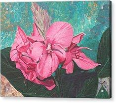Pink Canna Acrylic Print by Hilda and Jose Garrancho