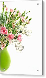 Pink Carnation Flowers Acrylic Print by Vizual Studio