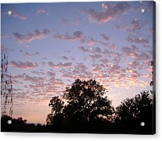 Pink Clouds At Sunset Acrylic Print