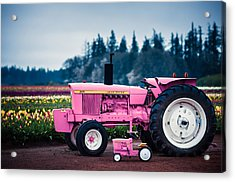 Acrylic Print featuring the photograph Pink Deeres by Brian Bonham