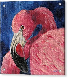 Pink Flamingo Iv Acrylic Print by Torrie Smiley