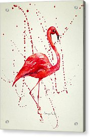 Pink Flamingo Acrylic Print by Tamyra Crossley