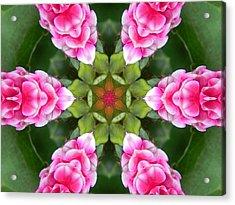 Pink Flower Star Mandala Acrylic Print