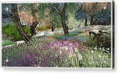 Pink Garden Acrylic Print by Susanne Baumann